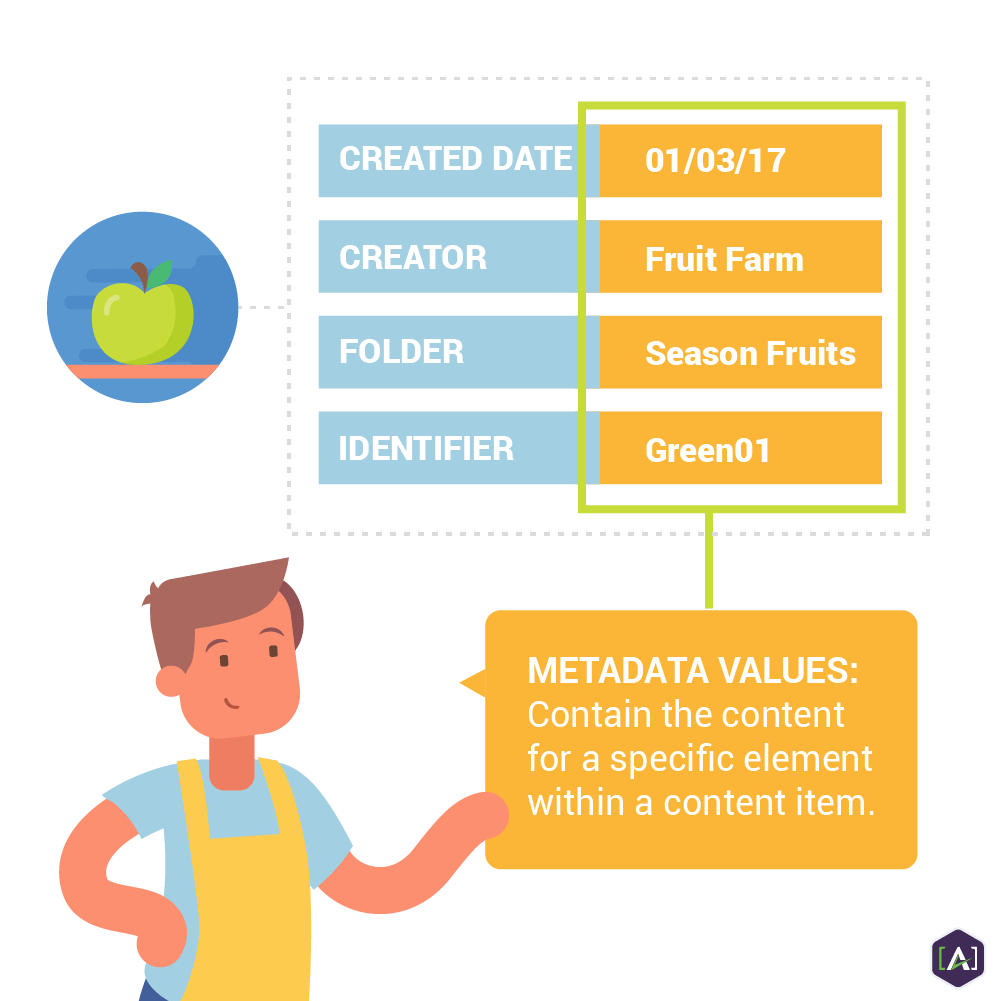Metadata Values Explained