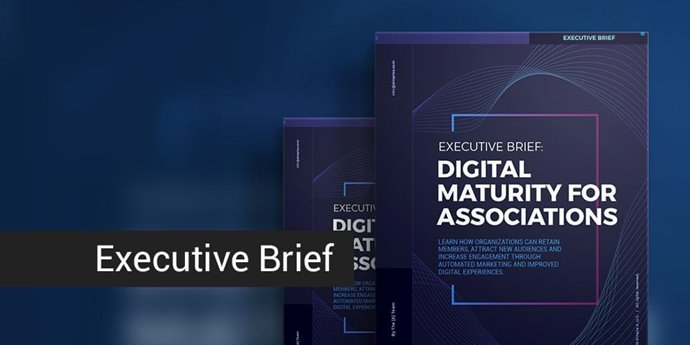 Executive Brief: Digital Maturity for Associations
